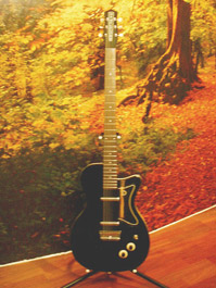 kitarat_danelectron
