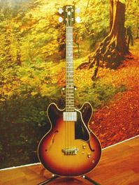 kitarat_gibson_eb2