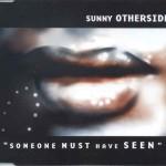 sunnyotherside_someonemusthaveseen